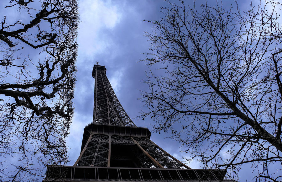 La dame de fer bien entourée Eiffel Tower Tour Eiffel Architecture Bare Tree Branch Built Structure City Cloud - Sky Day History Iron Iron - Metal Low Angle View Nature No People Outdoors Plant Sky Spire  Tall - High The Past Tourism Tower Travel Destinations Tree EyeEmNewHere Go Higher