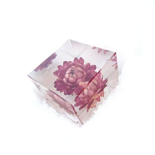 2017.1.15 Sola Cube Snow
