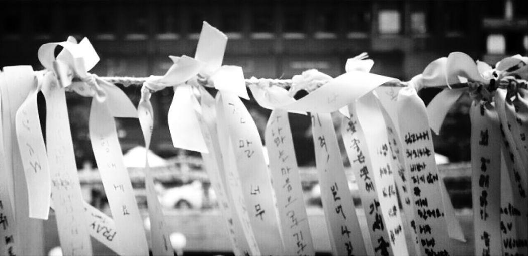 Sorry Sorry Sorry Sewol @korea seoul jongro-1ga
