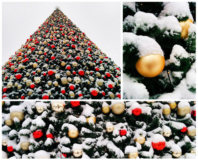 Collage of snow-covered christmas tree decorated with balls outdoor Christmas Balls Christmas Trees Collage Artifact Celebration Christmas Christmas Decoration Christmas Decorations Christmas Tree Close-up Cold Temperature Collection Decorated No People Outdoor Outdoors Snow Snowflake Snowy Winter