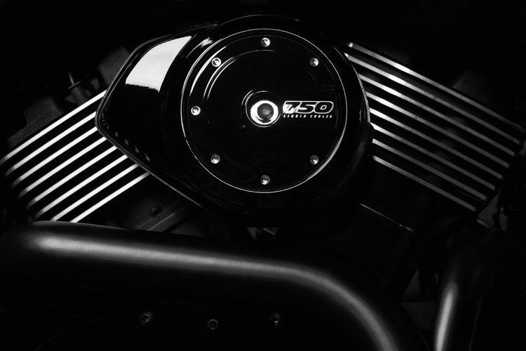 Bikers Harley Davidson Harley-Davidson Malta Motorcycle Motorcycle Photography Biker Engine Motorbike Motorcycles Street 7 V-twin