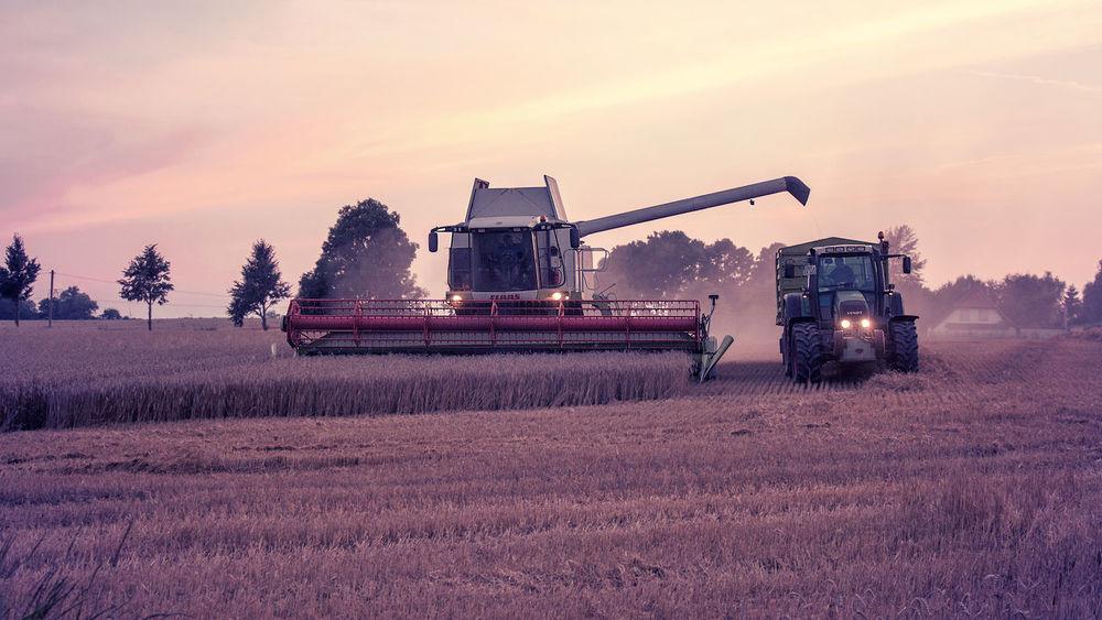 Agriculture Combine Harvesters Die Stadt Am Meer Field Hansestadt Hansestadt Rostock Harvest Time Harvesting Land Vehicle Ripe Crops Rostock Rostocker Ansichten Warm Warm Colors Work In Progress