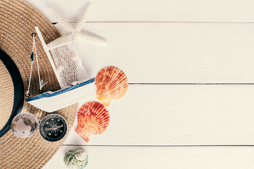 Travelling Holiday Sea Shell Still Life Table