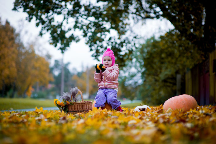 Cute girl sitting on pumpkin over autumn leaves against trees at public park