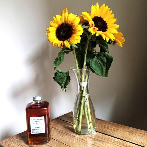 NIKKA Whisky Berlin Sunflower