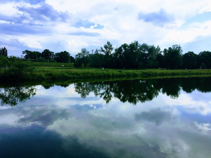 Reflection Sky Cloud - Sky Tree Water Nature Tranquil Scene Beauty In Nature Scenics Tranquility Lake Waterfront No People Outdoors Day Growth Landscape Breathing Space Lost In The Landscape