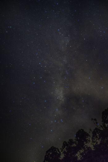 Milky way in hulu selangor malaysia Astronomy Dark Full Frame HULU SELANGOR Infinity Malaysia Mw Night Semenyih Space Star Star Field Under The Milky Way