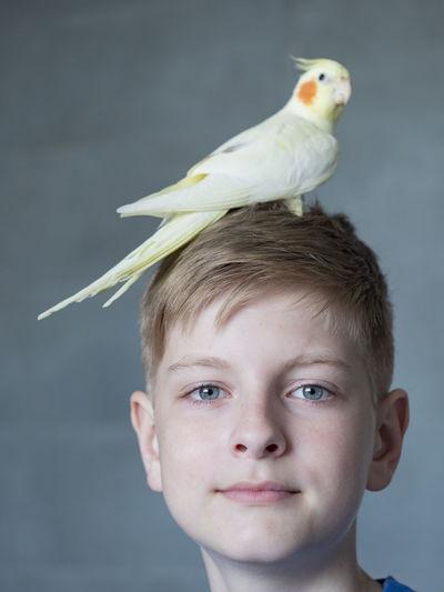 Portrait of boy against bird