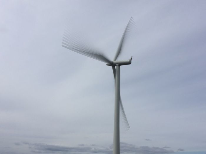 Wind farm. Wind