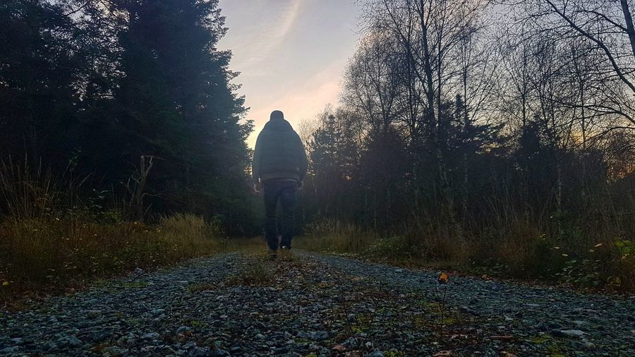 Rear view of person walking on street amidst trees in forest