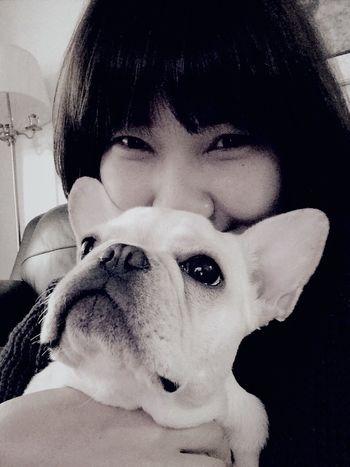 사랑해. 우리크림이 My Puppy ❤ Frenchbulldog Dog Cream