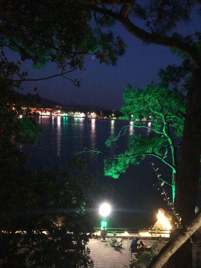 Türkiye Turkey Akyaka, Mugla Akyaka EyeEmNewHere Night Illuminated Tree Water Plant Nature Adventures In The City Outdoors No People Light - Natural Phenomenon Glowing Reflection City