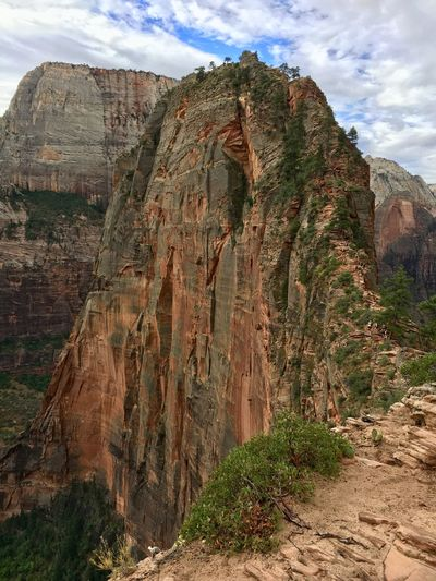 Before the final ascent. Travel Destinations Travel Hikingadventures Hiking Trail Hiking Angels Landing Trail Angels Landing Zion National Park Utah Rock Rock Formation Rock - Object Sky Cloud - Sky Mountain Geology Scenics - Nature Beauty In Nature Physical Geography Landscape Nature Day Environment Tranquil Scene Tranquility Non-urban Scene