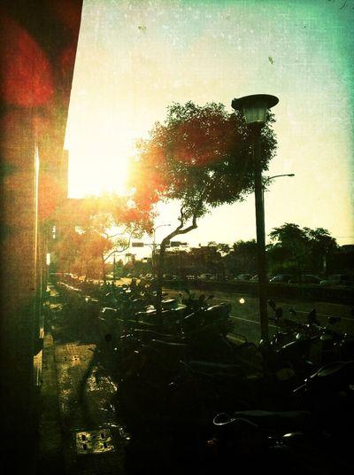 sunshine at LAATTEA Sunshine