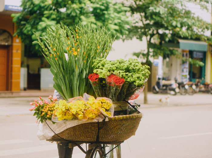Yellow flowers in basket