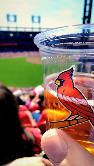Take Me Out To The Ball Game Take Me Out To The Crowd Buy Me Some Peanuts And Cracker Jack St Louis Cardinals Beer Baseball Stadium