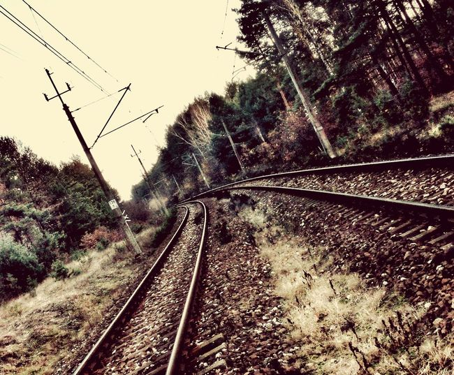 Transportation Day No People Railroad Track Tory Szyny Transport Forest Las Thl THL T100s