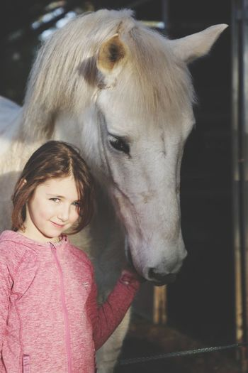 Portrait of cute girl standing in stable