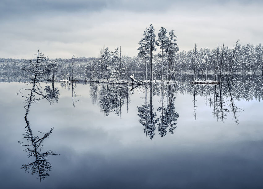 Scenic landscape with lake reflection and snow at winter evening Calm Finland Moment Of Silence Nature Pine Beauty In Nature Blue Cloud - Sky Clouds And Sky Forest Island Lake Nature Nautical Vessel No People Outdoors Peaceful Reflection Scenics Sky Tranquil Scene Tranquility Tree Trunk Water Perspectives On Nature