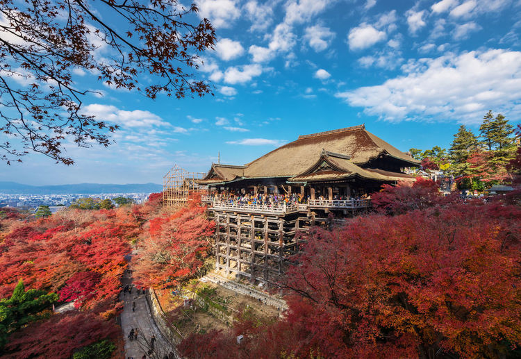 Kiyomizu-dera Temple in the autumn season, Japan Kiyomizu-dera Architecture Autumn Beauty In Nature Branch Building Exterior Built Structure Cloud - Sky Day Landmark Leaf Low Angle View Nature No People Outdoors Pavillion Place Of Worship Religion Scenics Sky Spirituality Temple Travel Destinations Tree