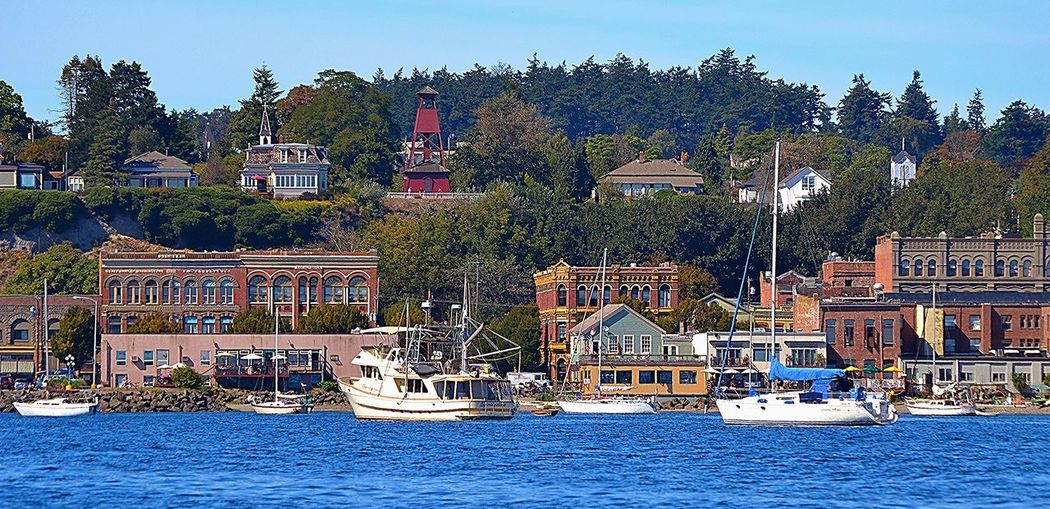 From the Water Puget Sound My Town Town Boats Boat Water Sunny Day Old Buildings Seaside Port Townsend