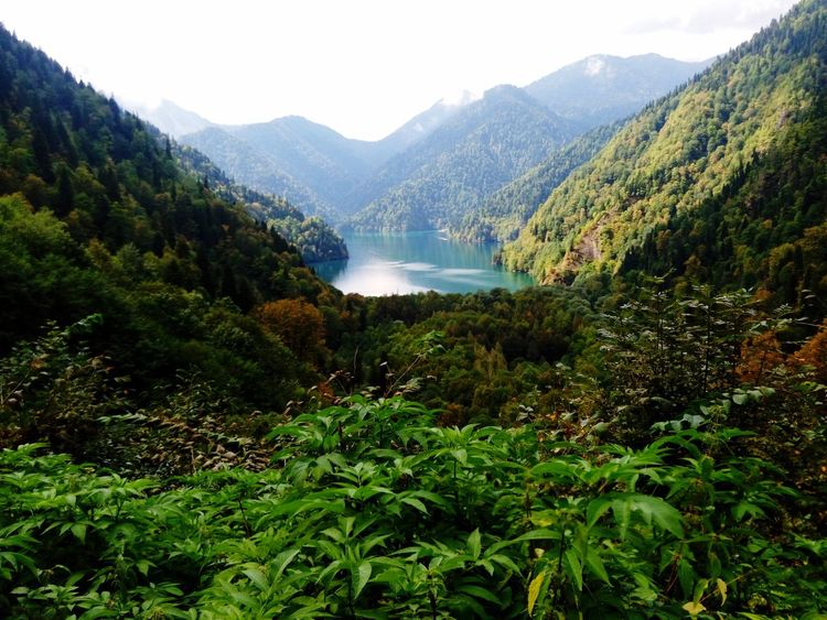 Безмятежность Lake Plant Tree Mountain Beauty In Nature Scenics - Nature Growth Nature Green Color