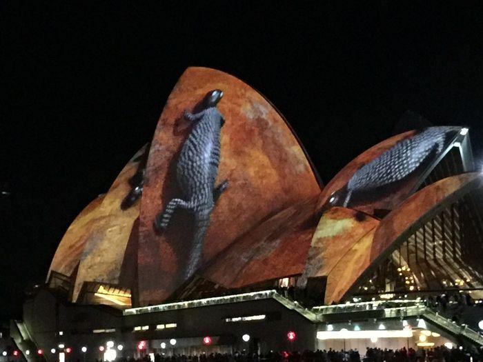 Izzymaxie Vivid Sydney Opera turned into light, idea design VIVID Sydney Operahouse Lightshow Nightphotography Australian Landscape Indigenous Design Lighted Structure