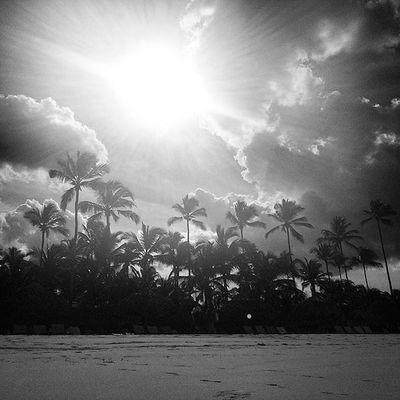Caribbean Sunny Beachlife Paradise