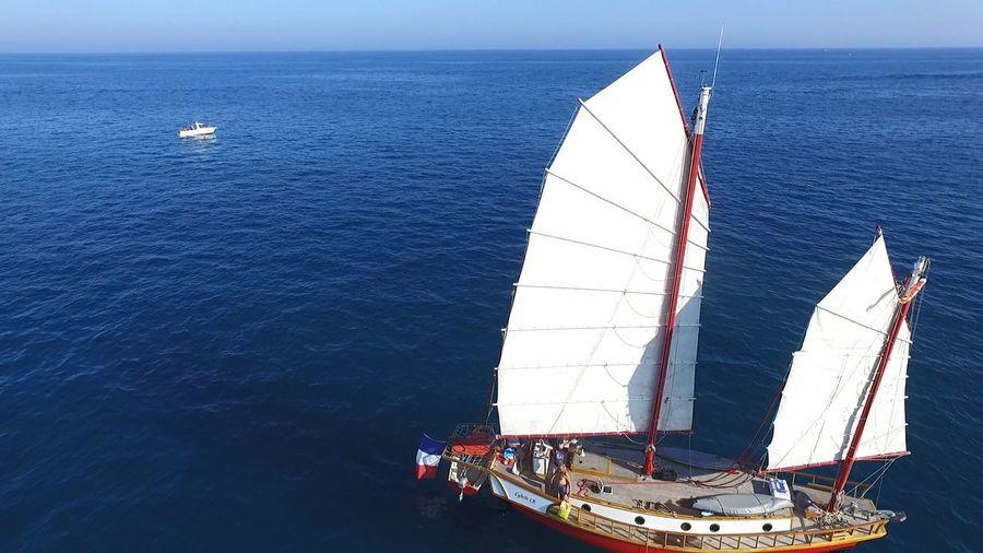 S Sailing Boat
