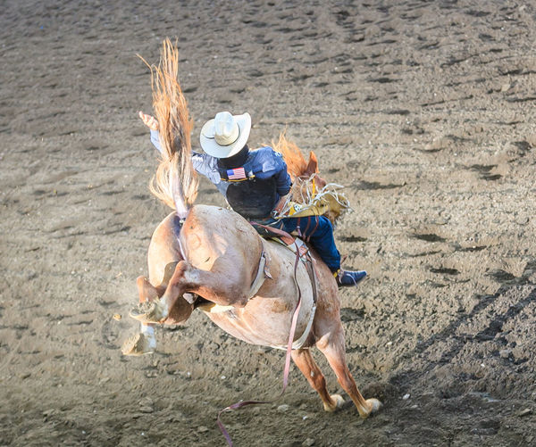 High Angle View Of Cowboy Riding Horse On Dirt