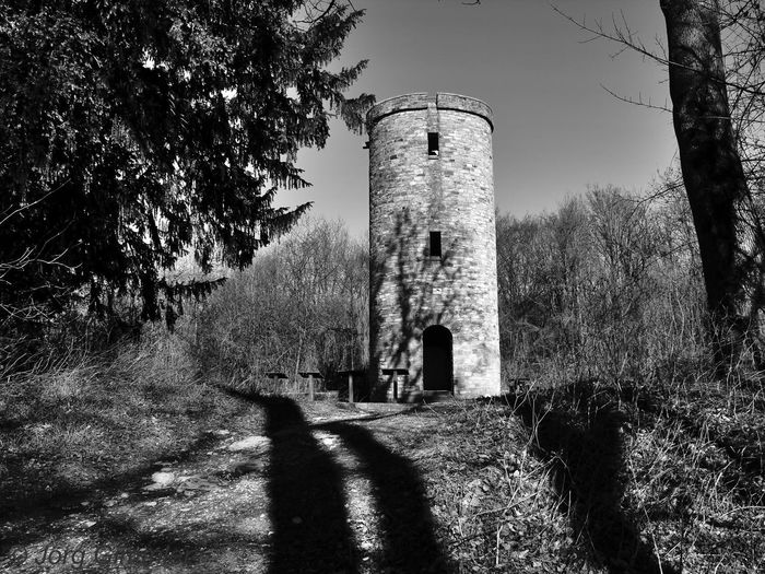Canon Canonphotography Canon_photos Canon Eos  Canon 18-55 Bw Black And White Blackandwhite B/W Photography B/w Tree Shadow History Sky Architecture Built Structure Building Exterior