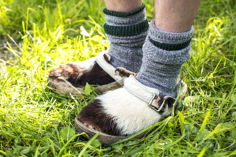 Close up of traditional clogs made of cowhide Bavaria Munich Oktoberfest Tirol  Animal Austria Austrian Background Beef Black Brown Business Clogs Closeup Cow Cowhide Farming Funny Fur Grass Green Historic Legs Man Material Nature Nelore Outdoor Pattern Pretty Print Rural Shoes Socks Texture Traditional Traditional Costume Tyrol View White Wooden Wool Work Human Leg Outdoors One Person Day Leather Leather Shoes