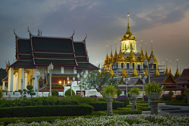tropical swimming pool at night and Buddhist Temple in thailand Built Structure Building Exterior Architecture Building Belief Place Of Worship Sky Religion Spirituality Travel Destinations Nature Plant Travel No People Illuminated Tourism City Outdoors Gold Colored Spire