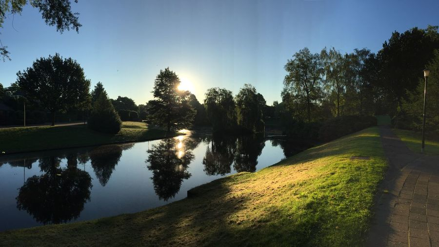 Morning sunrise in Hilversum, the Netherlands Beauty In Nature Blue Sky Hilversum Morning Nature Peaceful Scenics Sunlight Sunrise Tranquil Scene Tranquility Tree Water Zen