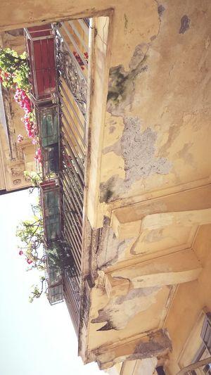 Balcony Balkon Alt Roma Roma Hausfassaden