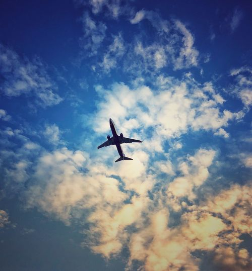 Мне бы в небо Airplane Mid-air on the move Plane Silhouette Blue Public Transportation Outdoors Motion Day Nature Travel No People