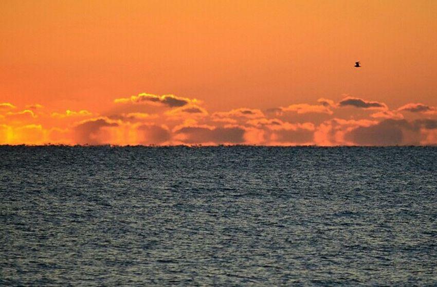 Fiery Sunrise Wrightsville Beach North Carolina Pjpink Sunrise Atlantic Ocean Cloud And Sky Clouds Cloudporn