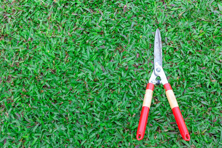Grass scissors on green grass background Grass Green Color Plant No People Field Day Land Nature Growth High Angle View Still Life Social Issues Close-up Sign Warning Sign Outdoors Equipment Gardening Equipment Red Lawn
