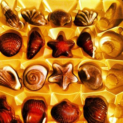 #home #chocolate #frutosdomar #guylian #iphone5 #igers #igers_figueira #tavarede #buarcos #instagood #instagram #instalove Home Chocolate Instagram IPhone5 Igers Instagood Instalove Buarcos Tavarede Igers_figueira Guylian Frutosdomar