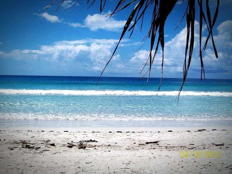 Hello World Havelockisland Life Is A Beach Andamanislands First Eyeem Photo Beach Relaxing Taking Photos Protecting Where We Play Edge Of The World The Week On EyeEm