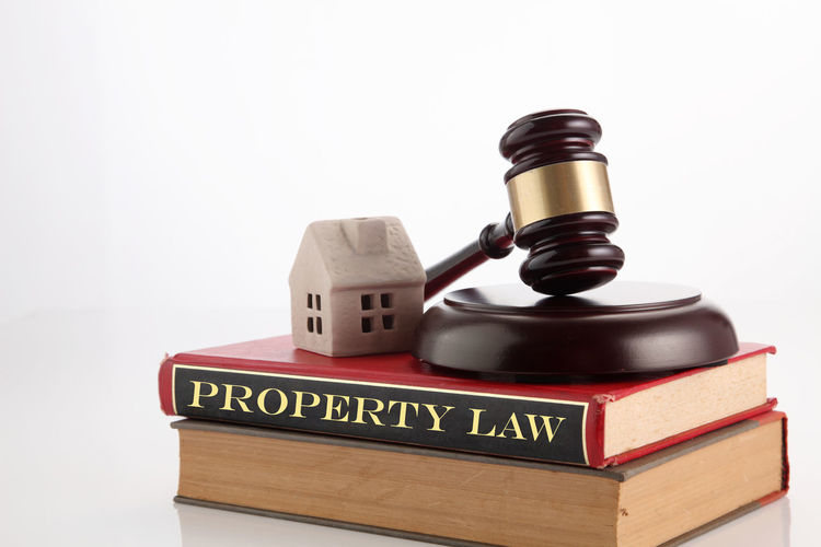 gavel hammer and a model house on the white background Attorney Auction Authority Court Guilt Lawyer Legal System Barrister Book Concept Gavel Hammer House Judgement Justice Law Lawsuit Legal Legalizeit Model House Property Law Publication Still Life Studio Shot White Background