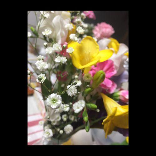 Babysbreath 霞草 一番好きな花 成人式でもらったお花。他の花の引き立て役になりがちやけど、私は一番すき。かすみそうの花束もらいたいですね。ゆめ。