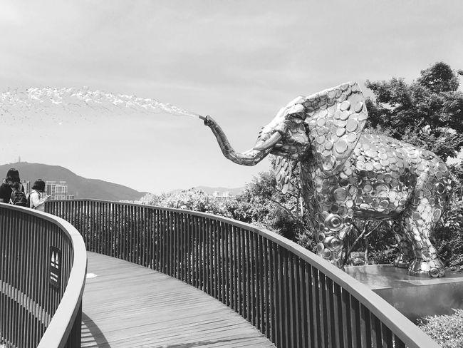 Outdoors 晴れ 暑い 夏休み Summervacation Sohot Sunnyday☀️ Busan,Korea Iphone7photography Shinsegae Department Store 釜山日和 Elephant Haeundae Fountain Awsome Day ♥