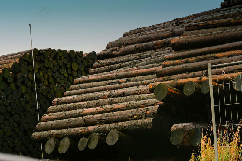 Wood yard business. Wood stacked outdoors. Concept forest industry environment. Felled tree trunks are sprayed with water to protect them against wood pests No People Nature Sky Day Architecture Built Structure Stack Outdoors Low Angle View Clear Sky Wood - Material Log Roof Plant Roof Tile Large Group Of Objects Sunlight Tree Abundance Timber #NotYourCliche Love Letter Humanity Meets Technology