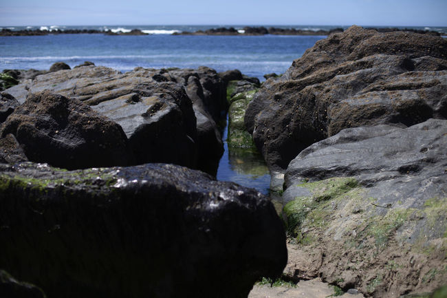 Beach Rocks Portugal Amorosa Beach Beauty In Nature Day Eroded Geology Land Motion Nature No People Outdoors Rock Rock - Object Rock Formation Rocky Coastline Rough Scenics - Nature Sea Sky Solid Tranquility Vianadocastelo Water