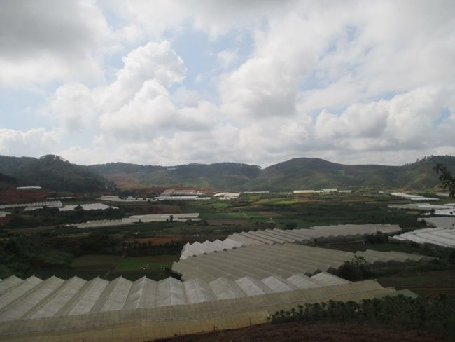 Green house Greenhouse Agriculture Highland Plants Asian Culture Vietnam
