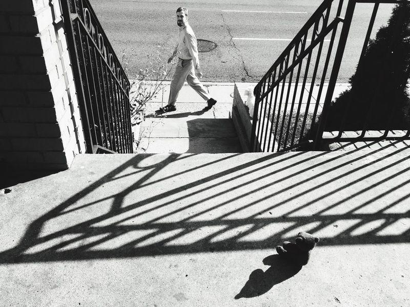Random :) Dog❤ Creative Light And Shadow