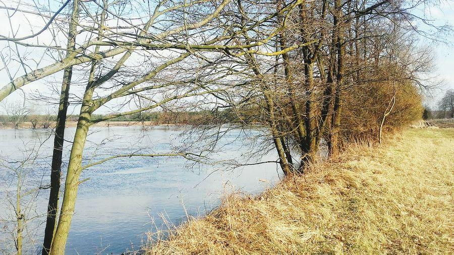 Rzeka Rzeka Bug Piękna_pogoda Krajobraz