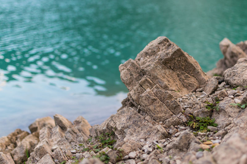 Close-up of rock in sea