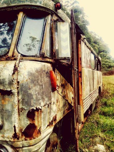 Into the Wild. Camping EasterWeekend Australia Rustic_wonders Outdoors ThrowbackWeekend